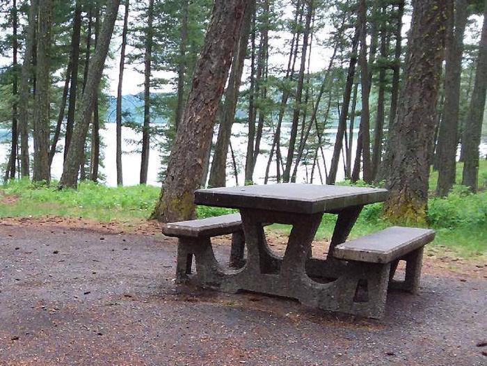 N. Dickey Lake Site 8-table
