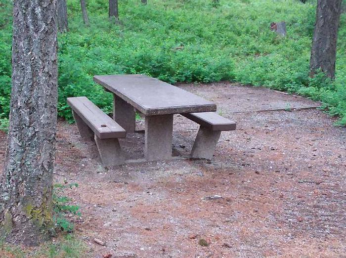 N. Dickey Lake Site 9-table