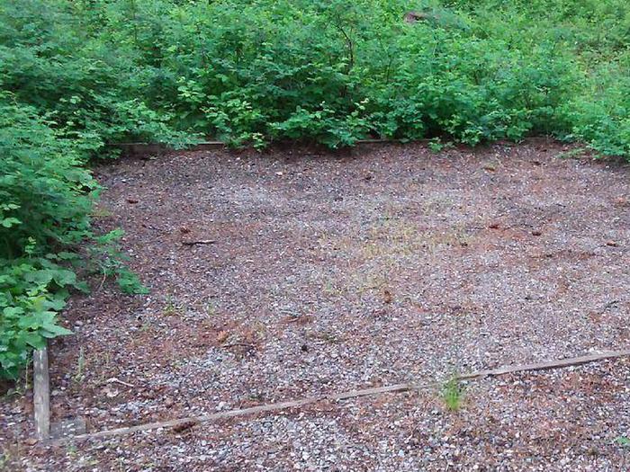 N. Dickey Lake Site 9-tent pad