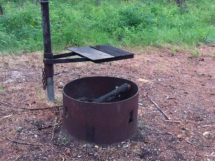 N. Dickey Site 11-fire ring