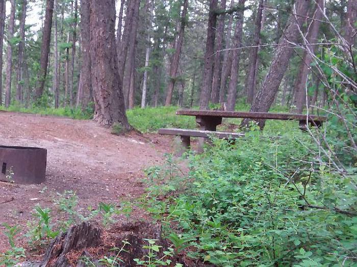 N. Dickey Lake Site 12-table