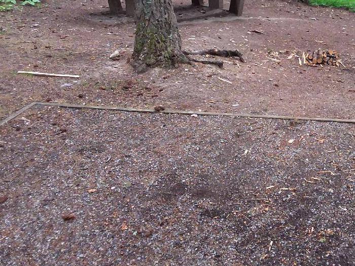 N. Dickey Lake Site 15-tent pad