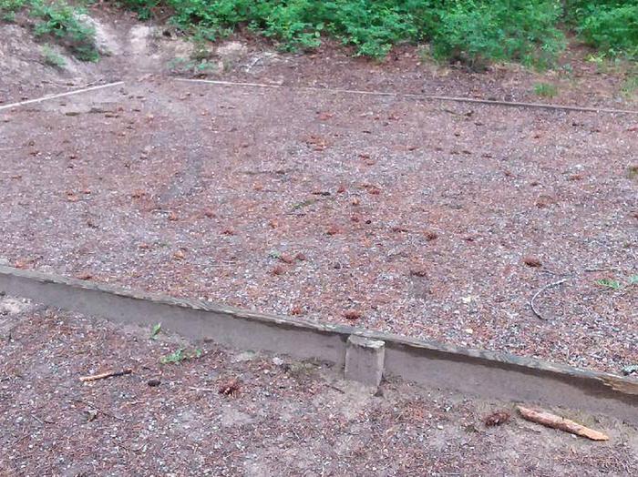 N. Dickey Lake Site 17-tent pad