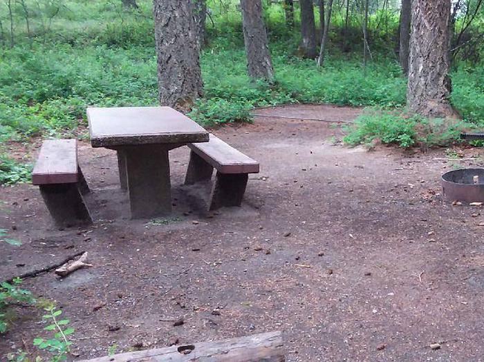 N. Dickey Lake Site 19-table