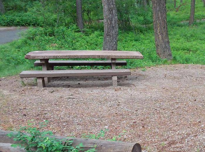 N. Dickey Lake Site 20-table