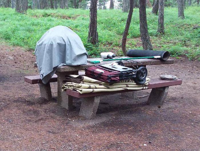 N. Dickey Lake Site 21-table