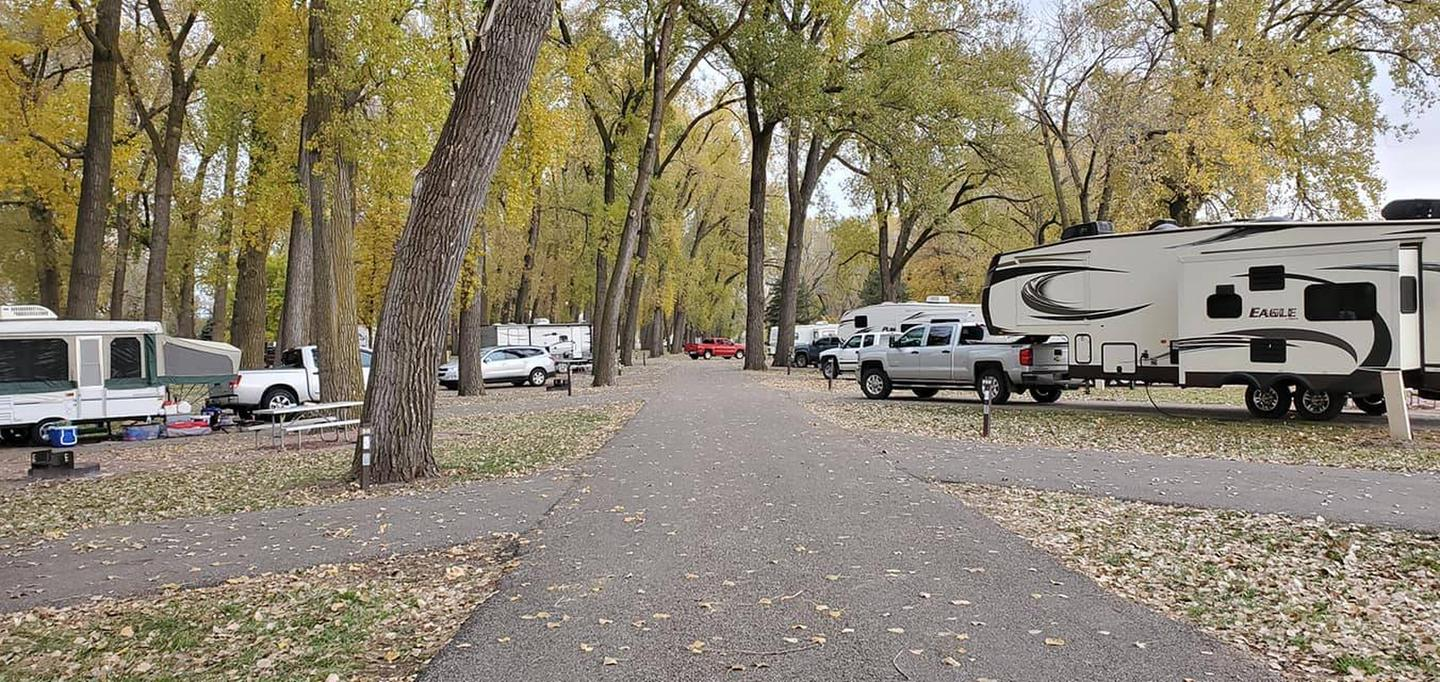 Cottonwood Campground in Fall