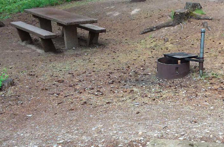 N. Dickey Site 24-table