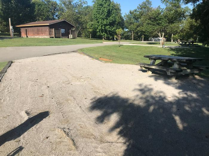WILLOW GROVE CAMPGROUND SITE #28 VIEW TOWARD ROADWILLOW GROVE CAMPGROUND SITE #28
