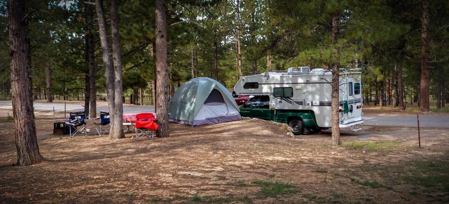 North Campground CampsiteBoth tents and RVs are welcome in North Campground