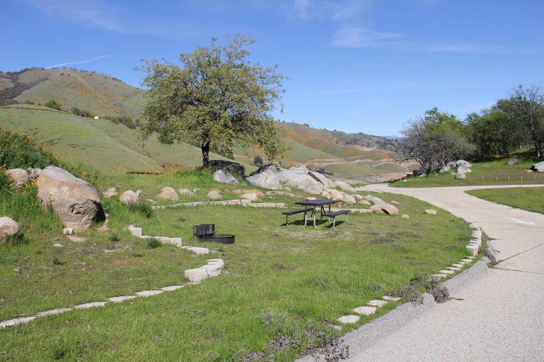 Site #35 Tent Pad