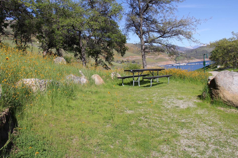 Site #36 Tent Pad