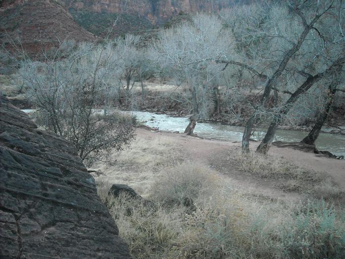 South Campground River 1South Campground River
