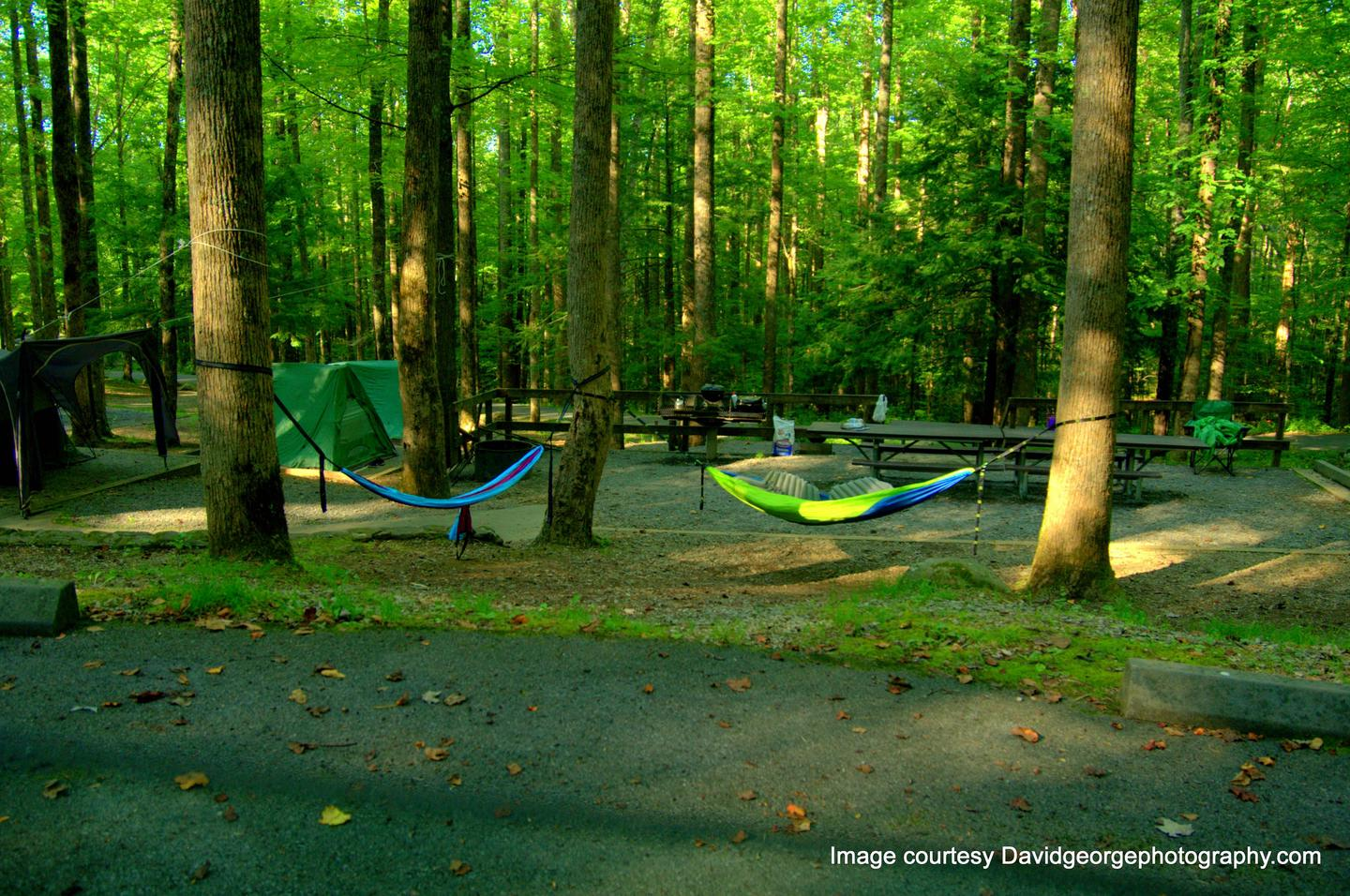 Cosby Group Camp
