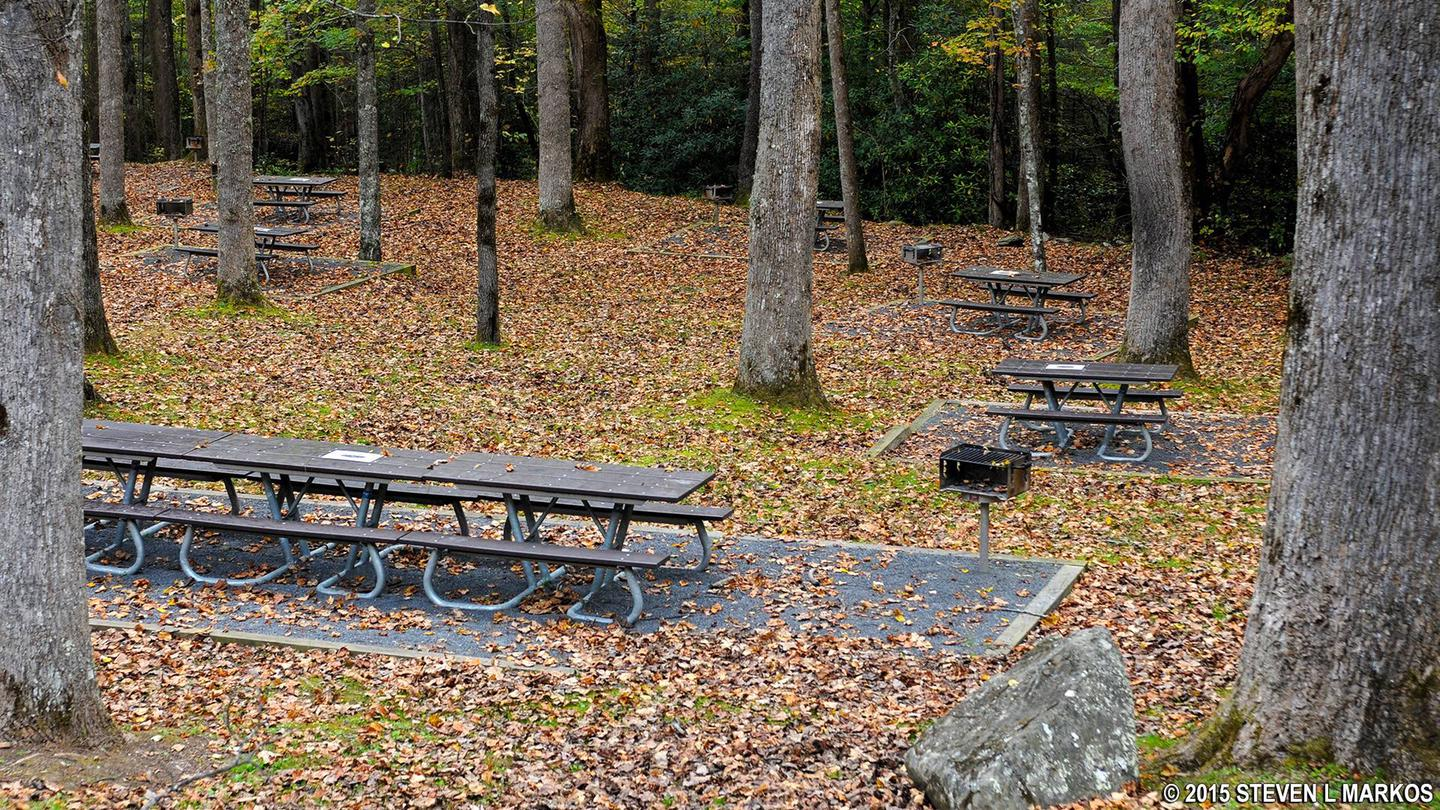 Day useDay use picnic area includes picnic tables and grills.  20+ creek side, 6 accessible picnic tables, 5 in forested median near hiker parking