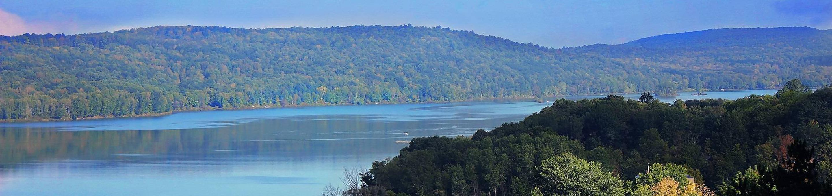 Whitney Point Lake OverlookThe view from Whitney Point Lake Overlook