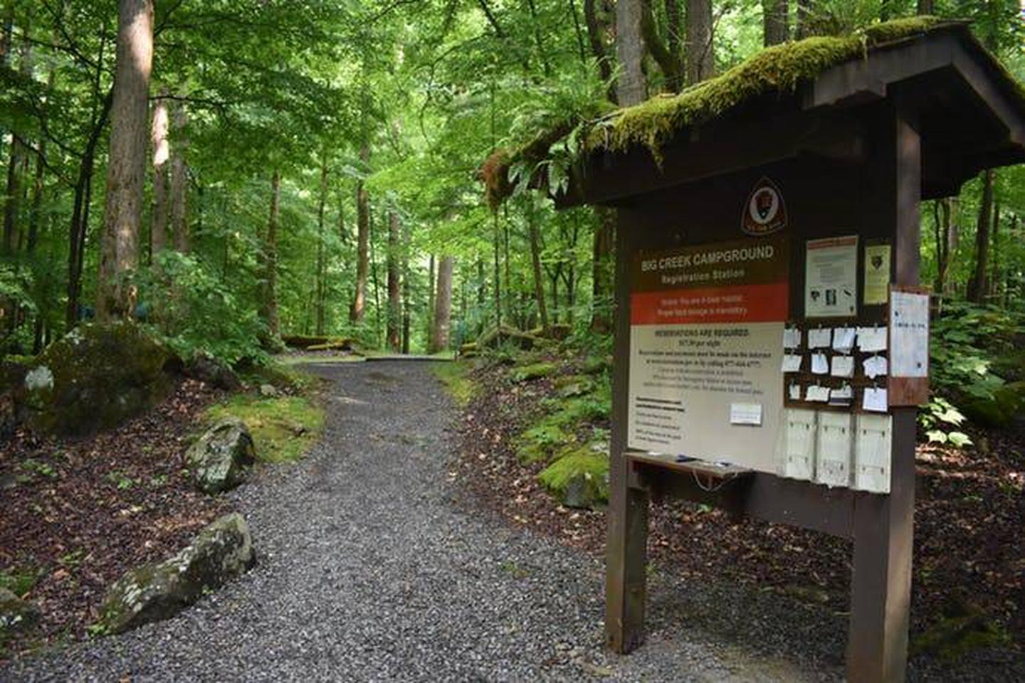 Registration BoardBig Creek is a reservation only campground. Find your camping permit on the registration board or see a camp host.