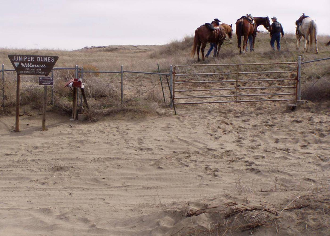 Equestrians assemble at the Wilderness Gate before a ride into the Juniper Dunes Wilderness