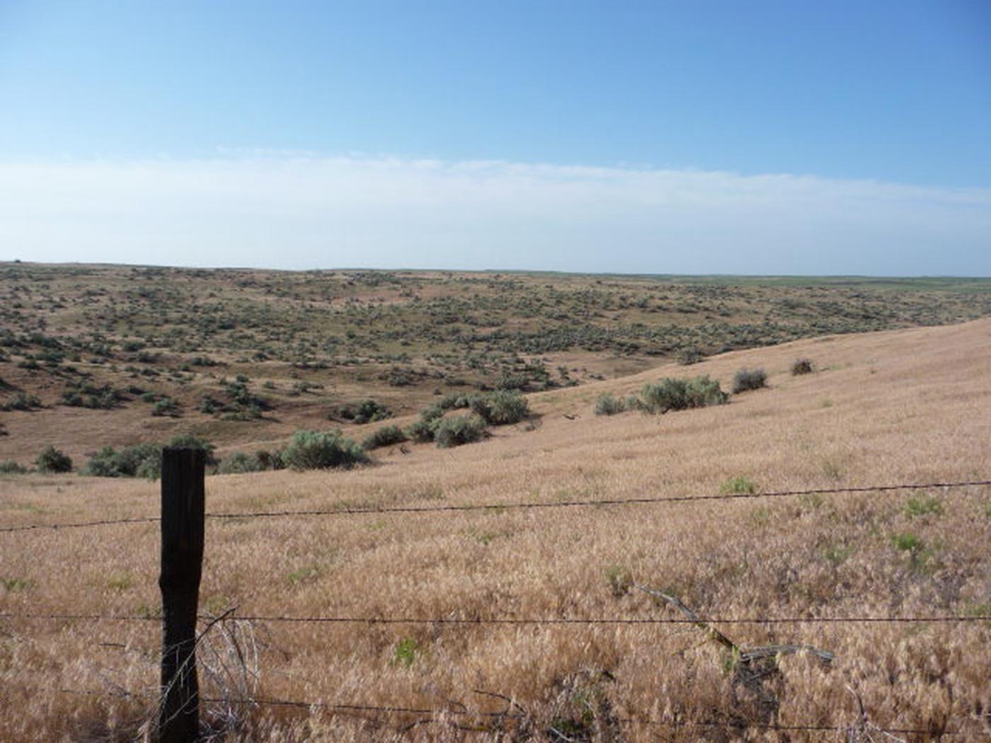 A view looking into the Juniper Dunes Wilderness