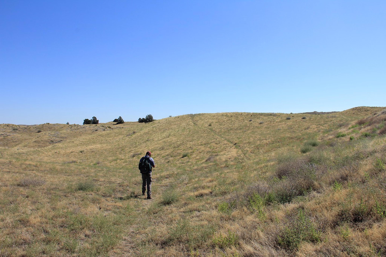 Hiker in the Juniper Dunes Wilderness