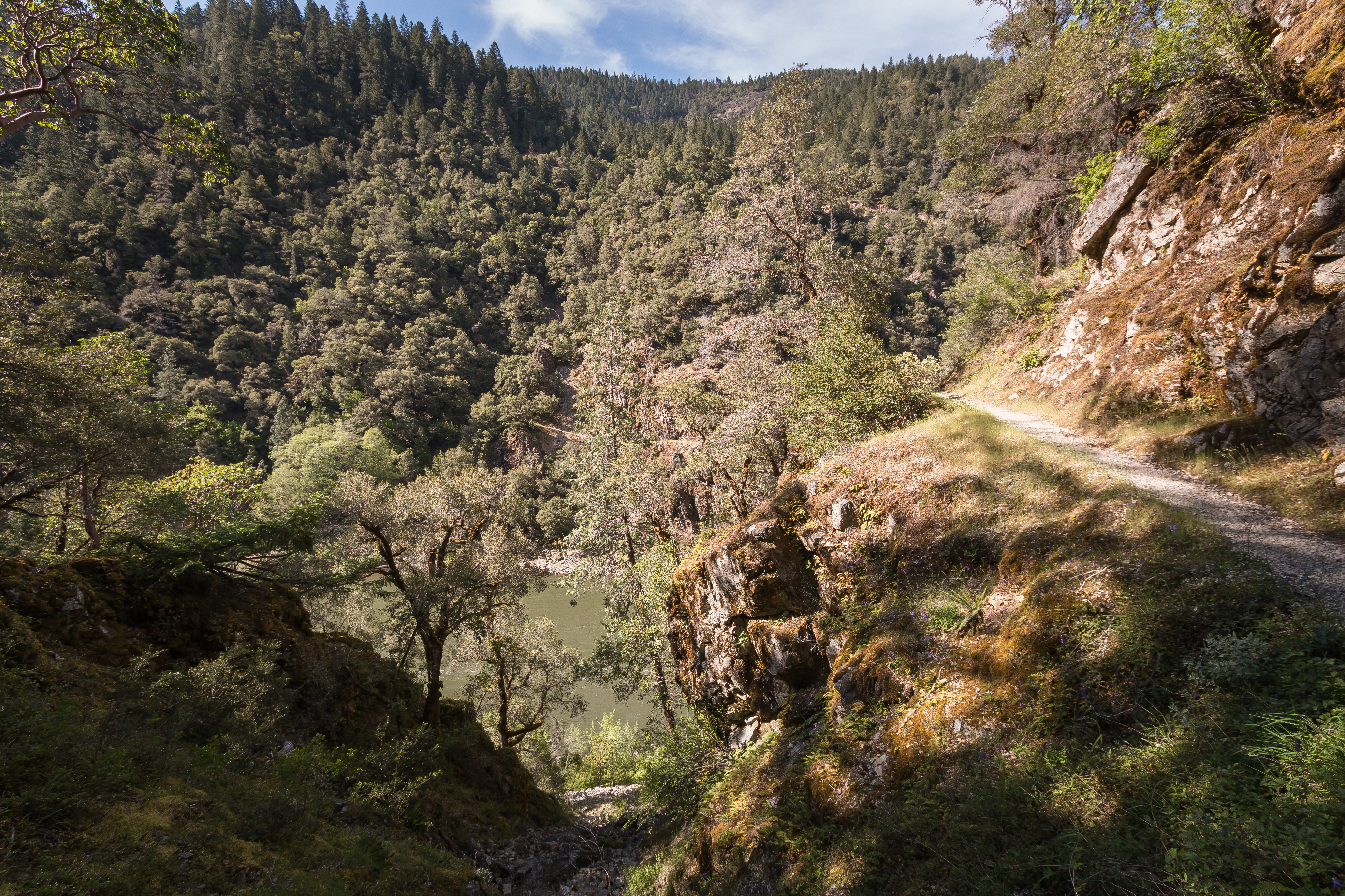 The Rogue River & Rainie Falls Trail.