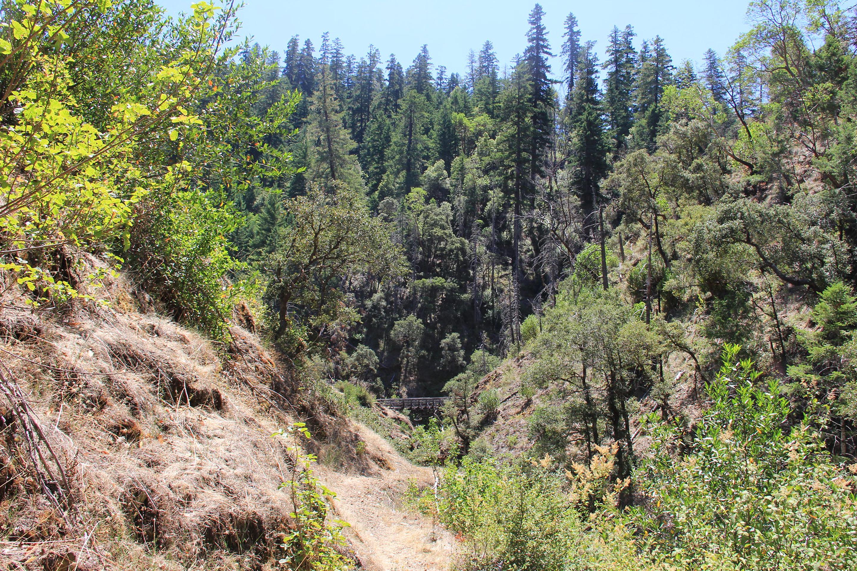 Mule Creek TrailMule Creek Trail