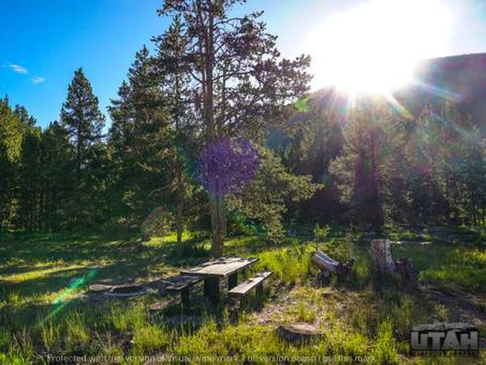 Sulphur Campground - 015SULPHUR CAMPGROUND - 015