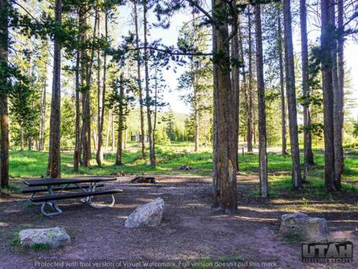 Sulphur Campground - 019SULPHUR CAMPGROUND - 019