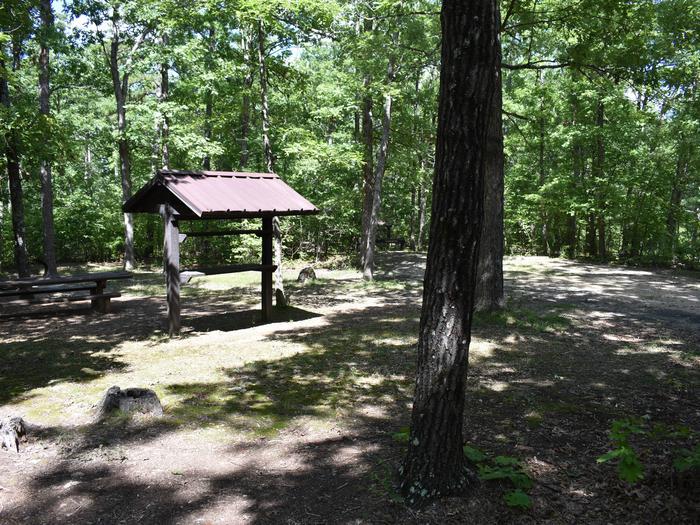 Campsite 37