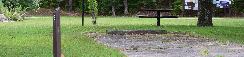 Campsite 9 showing parking spur, picnic table and lantern postCampsite 9