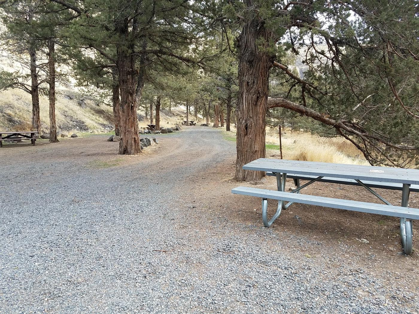 Campsites at Poison Butte Campground