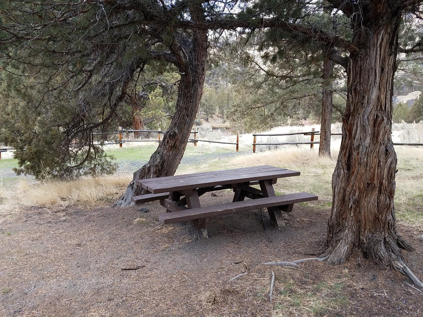 Picnic table at Upper Lone Pine Day-Use Area