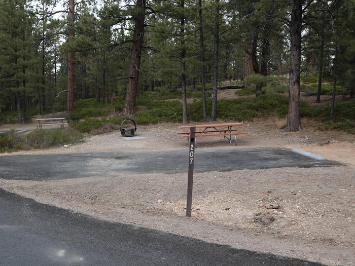 Sunset Campground Site 207Site 207