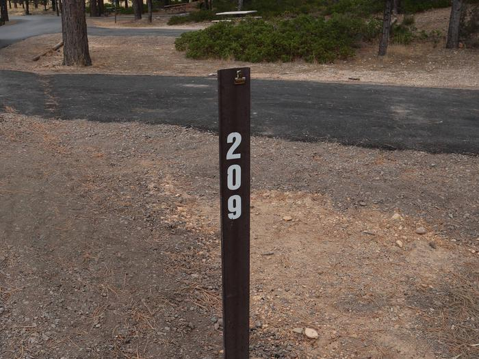 Sunset Campground Site 209Site 209