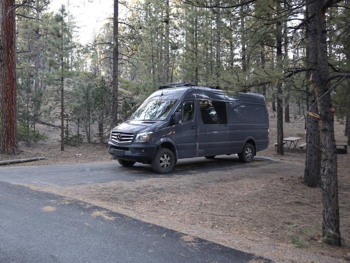 Sunset Campground Site 219Site 219