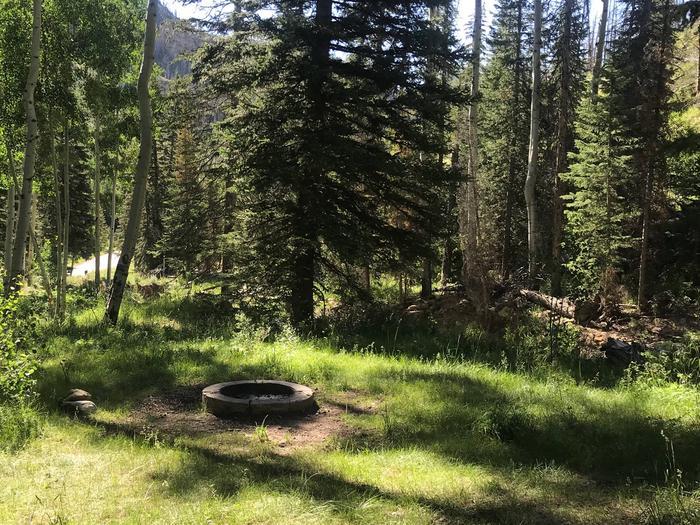 Bridges Campground Site 1