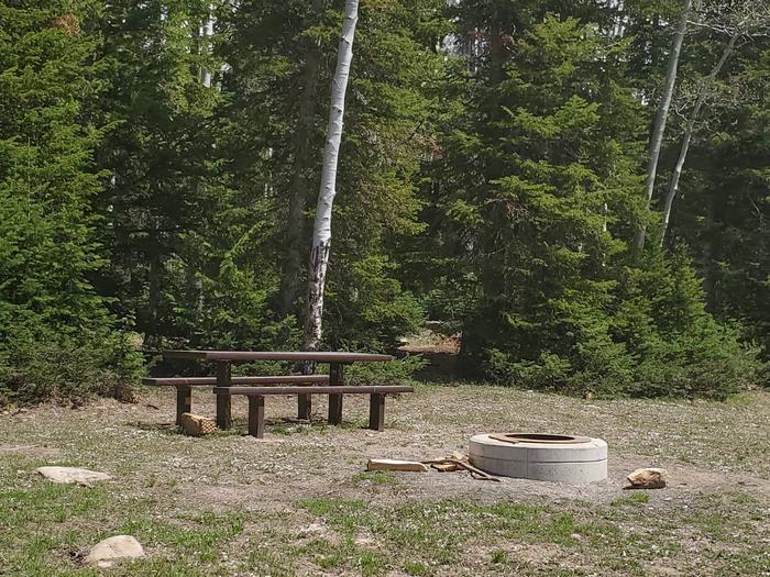Miller Flat Reservoir Campground Site 2