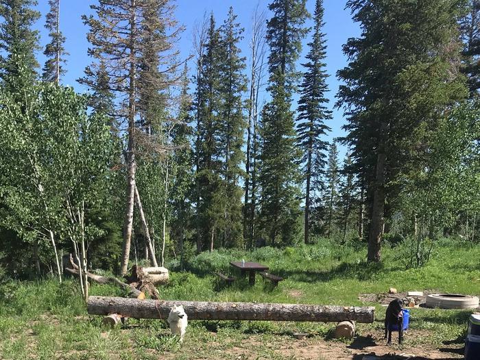 Miller Flat Reservoir Campground Site 1