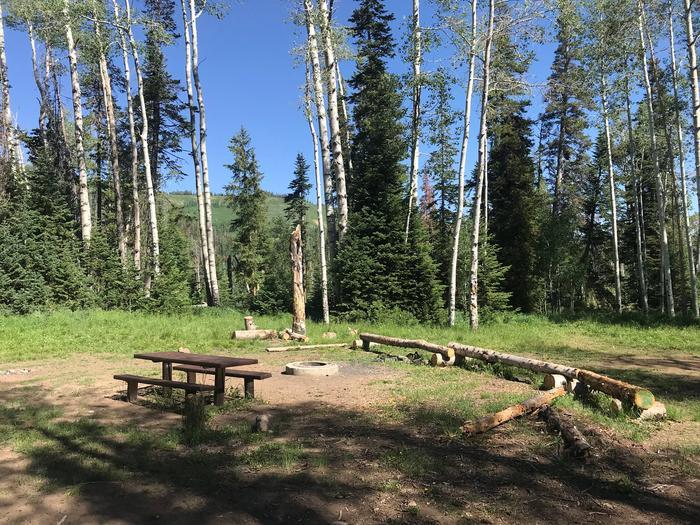 Miller Flat Reservoir Campground Site 4