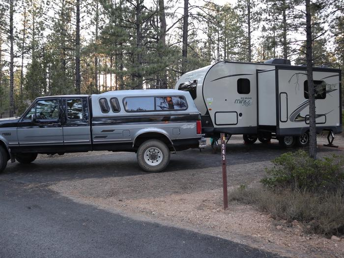 Sunset Campground Site 243Site 243