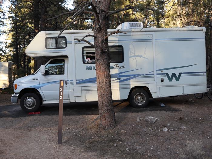 Sunset Campground Site 212 Site 212