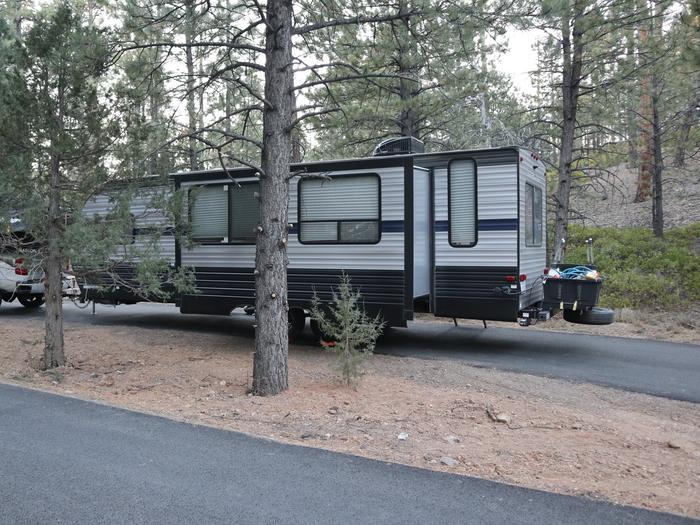 Sunset Campground Site 224Site 224