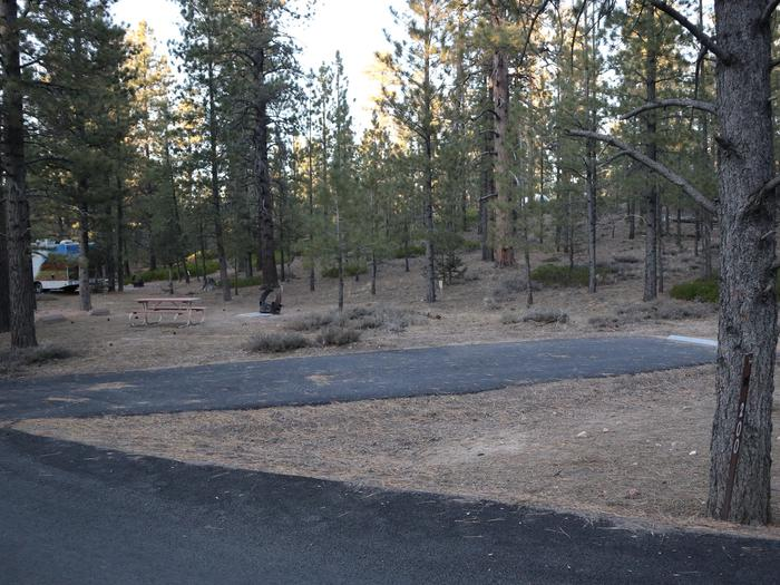 Sunset Campground Site 242Site 242