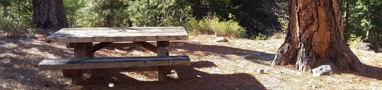Table and big pine at Lake Creek. Site 6 at Lake Creek.
