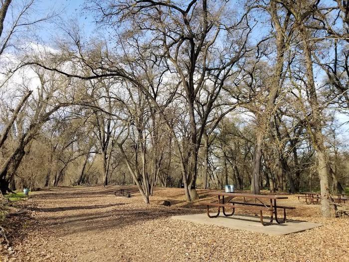 Valley Oak Campground
