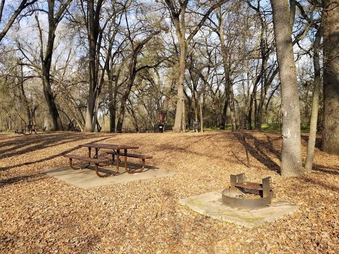 Camp Site # 2