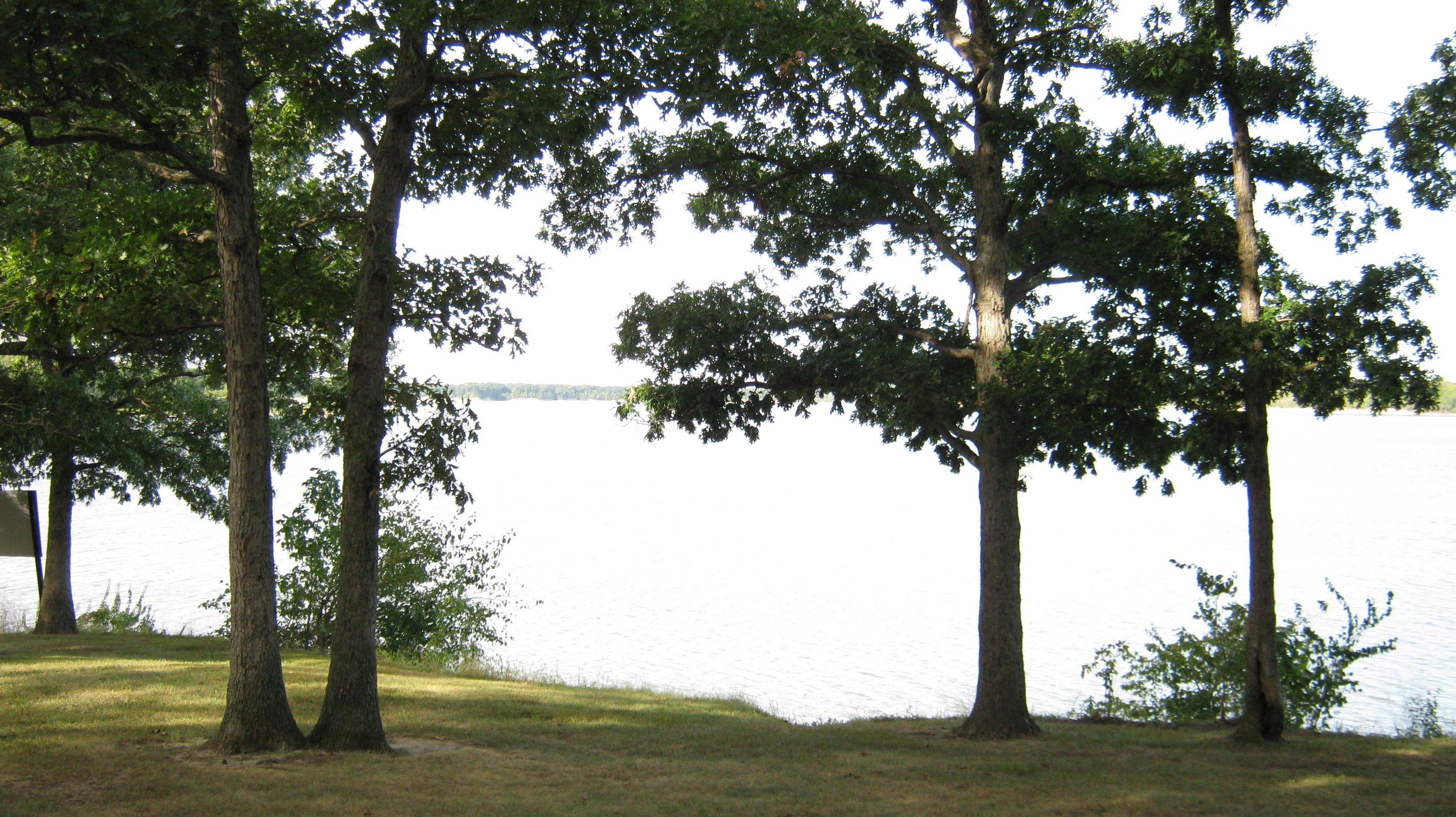View Picnic Shelter 1