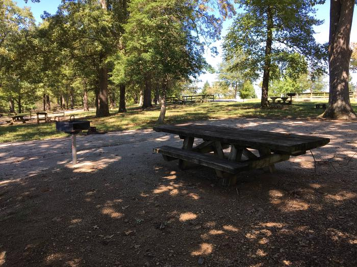 WILLOW GROVE CAMPGROUND SITE #59 TABLE AND GRILLWILLOW GROVE CAMPGROUND SITE #59