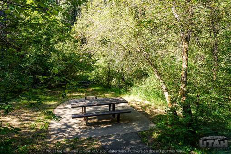 Balsam Campground - 001