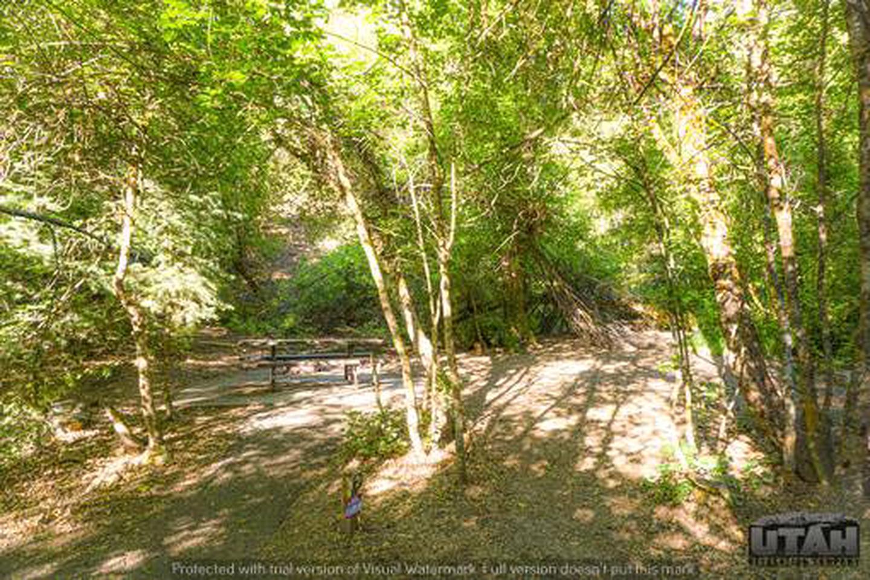 Balsam Campground - 003